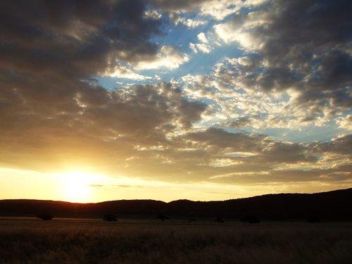 世界一周ナミブ砂漠1_19.jpg