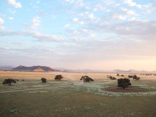 世界一周ナミブ砂漠1_25.jpg