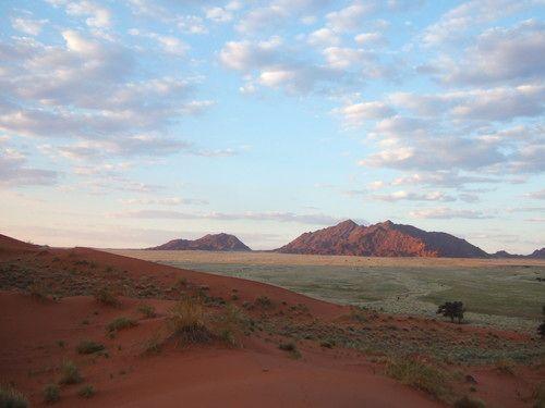 世界一周ナミブ砂漠1_28.jpg