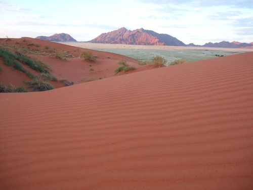 世界一周ナミブ砂漠1_30.jpg