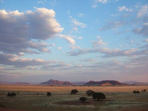 世界一周ナミブ砂漠1_32.jpg