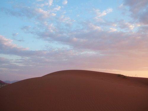 世界一周ナミブ砂漠1_35.jpg