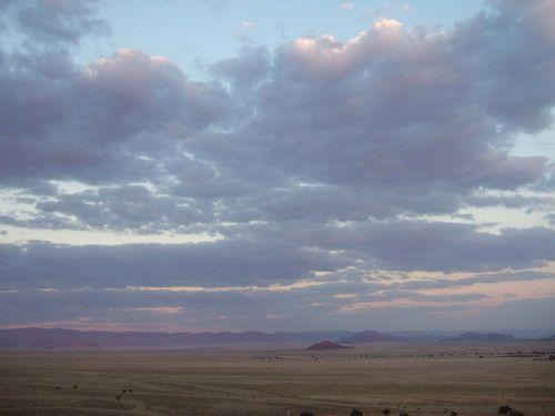 世界一周ナミブ砂漠1_37.jpg