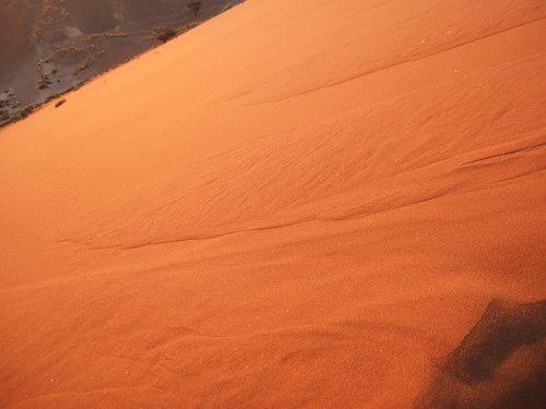 世界一周・ナミブ砂漠2_12.jpg