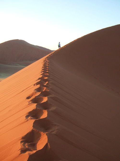 世界一周・ナミブ砂漠2_13.jpg