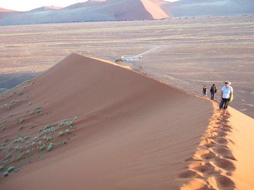 世界一周・ナミブ砂漠2_15.jpg