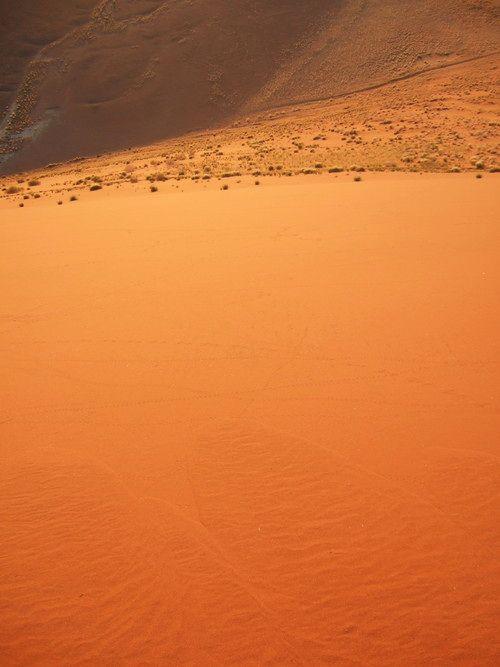 世界一周・ナミブ砂漠2_16.jpg