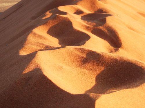 世界一周・ナミブ砂漠2_19.jpg