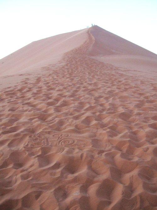 世界一周・ナミブ砂漠2_2.jpg