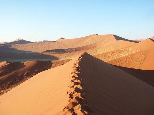 世界一周・ナミブ砂漠2_21.jpg