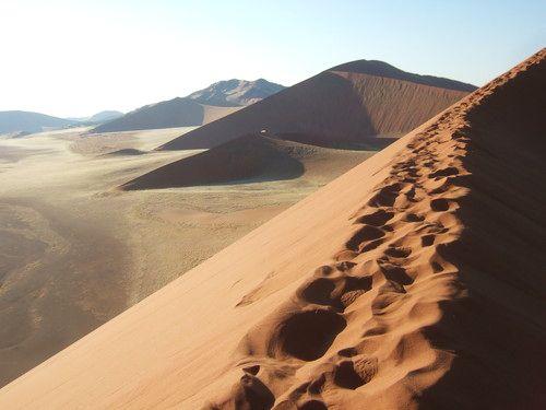 世界一周・ナミブ砂漠2_28.jpg