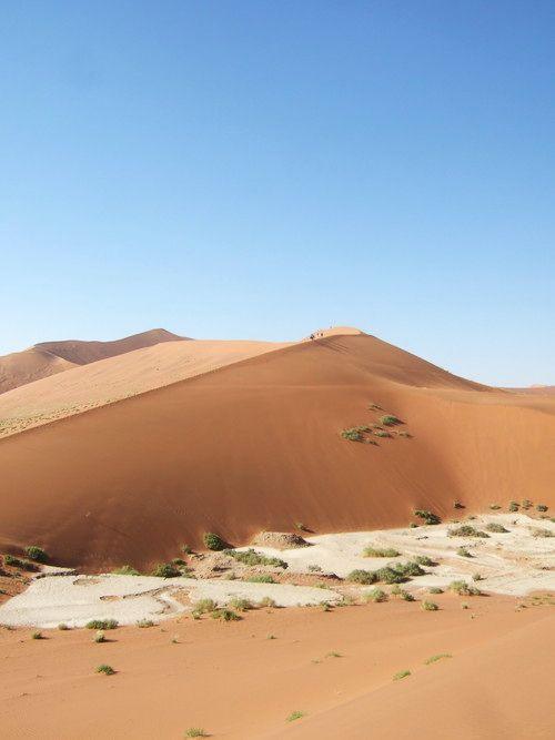 世界一周・ナミブ砂漠3_11.jpg
