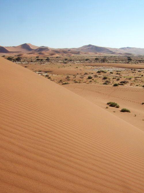 世界一周・ナミブ砂漠3_12.jpg