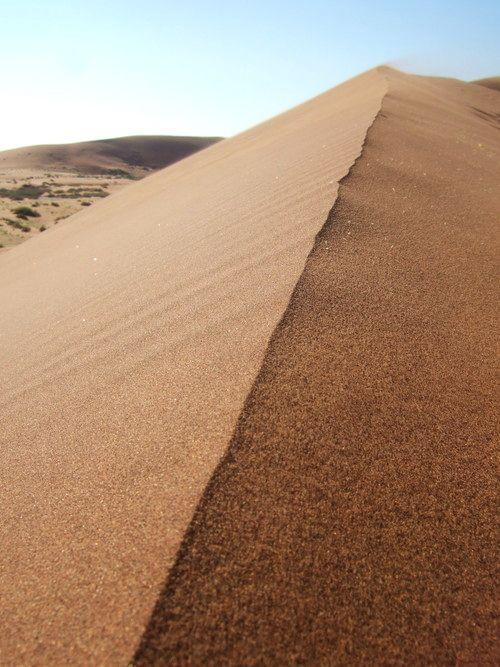 世界一周・ナミブ砂漠3_13.jpg