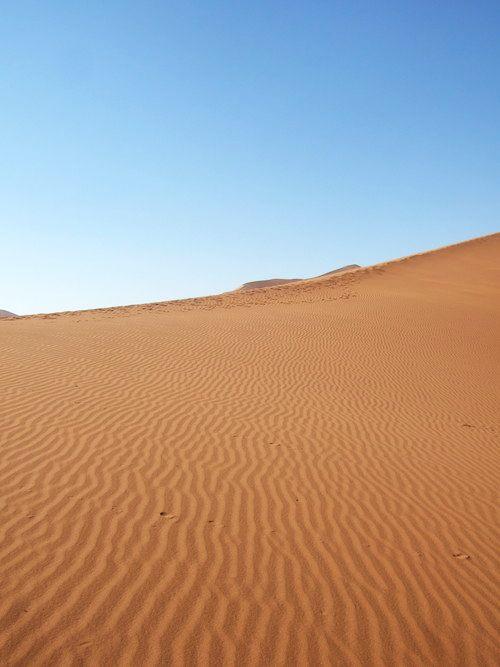 世界一周・ナミブ砂漠3_14.jpg