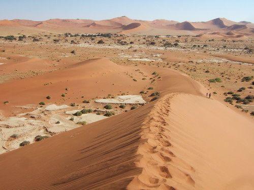 世界一周・ナミブ砂漠3_15.jpg