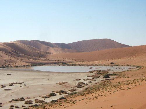 世界一周・ナミブ砂漠3_17.jpg