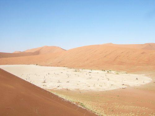 世界一周・ナミブ砂漠3_18.jpg