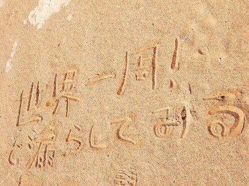 世界一周・ナミブ砂漠3_26.jpg