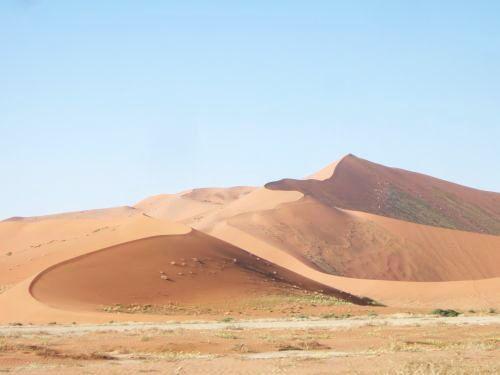 世界一周・ナミブ砂漠3_6.jpg