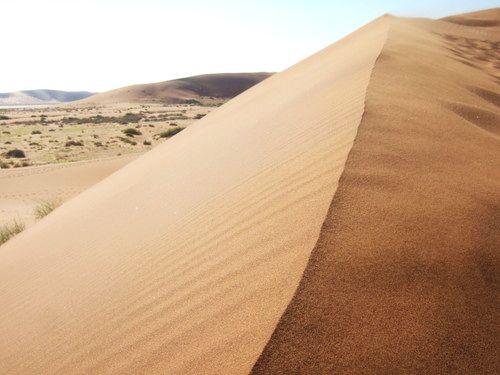 世界一周・ナミブ砂漠3_9.jpg