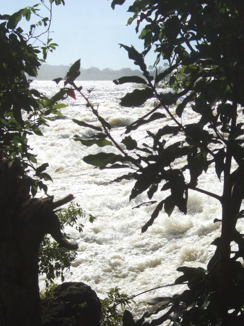 世界一周・ビクトリアの滝・世界三大瀑布_44.jpg