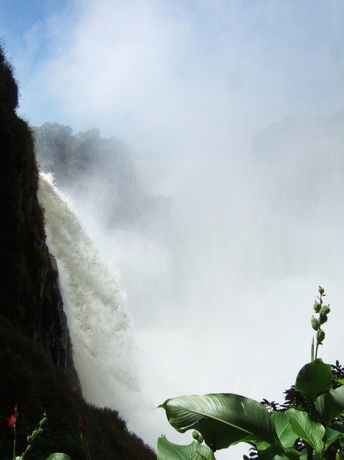 世界一周・ジンバブエ旅行_9.jpg