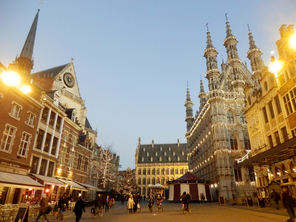 2013年ベルギー旅行_15