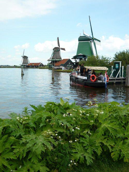 世界一周・オランダ風車_18.jpg