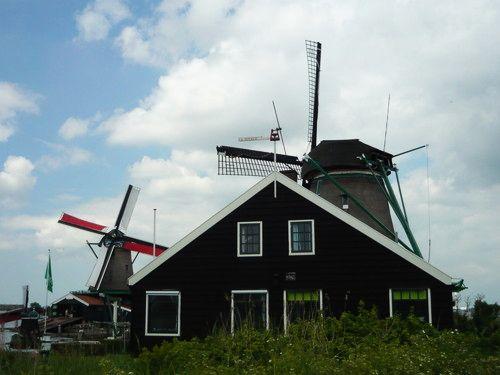 世界一周・オランダ風車_25.jpg