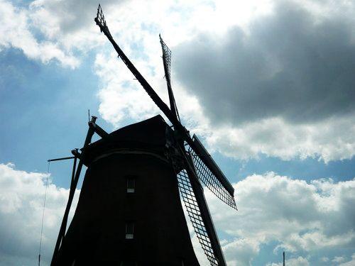 世界一周・オランダ風車_29.jpg