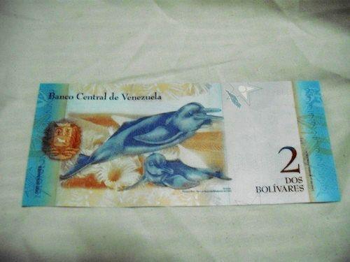 世界一周・ベネズエラ・カラカス旅行2_25.jpg