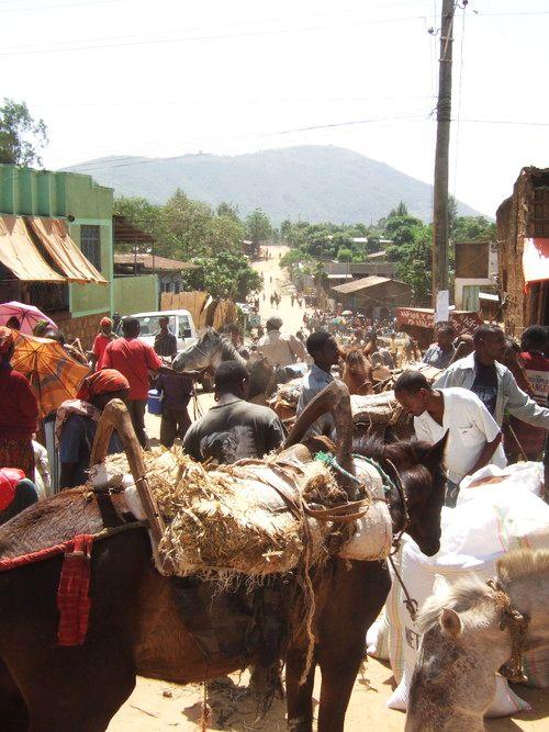世界一周エチオピア0