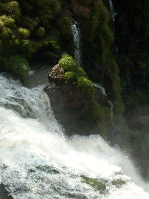 世界一周・世界遺産イグアスの滝_19.jpg