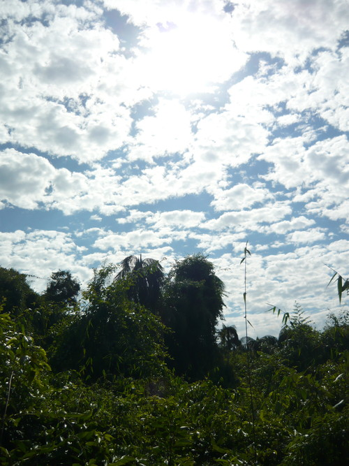 世界一周・世界遺産イグアスの滝_9.jpg