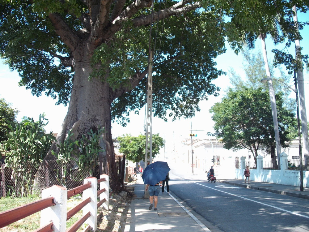 世界一周・キューバ・シエンフエゴス観光_21.jpg