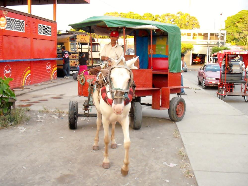 世界一周・ニカラグア・グラナダ観光_11.jpg