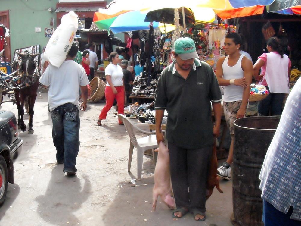 世界一周・ニカラグア・グラナダ観光2_24.jpg
