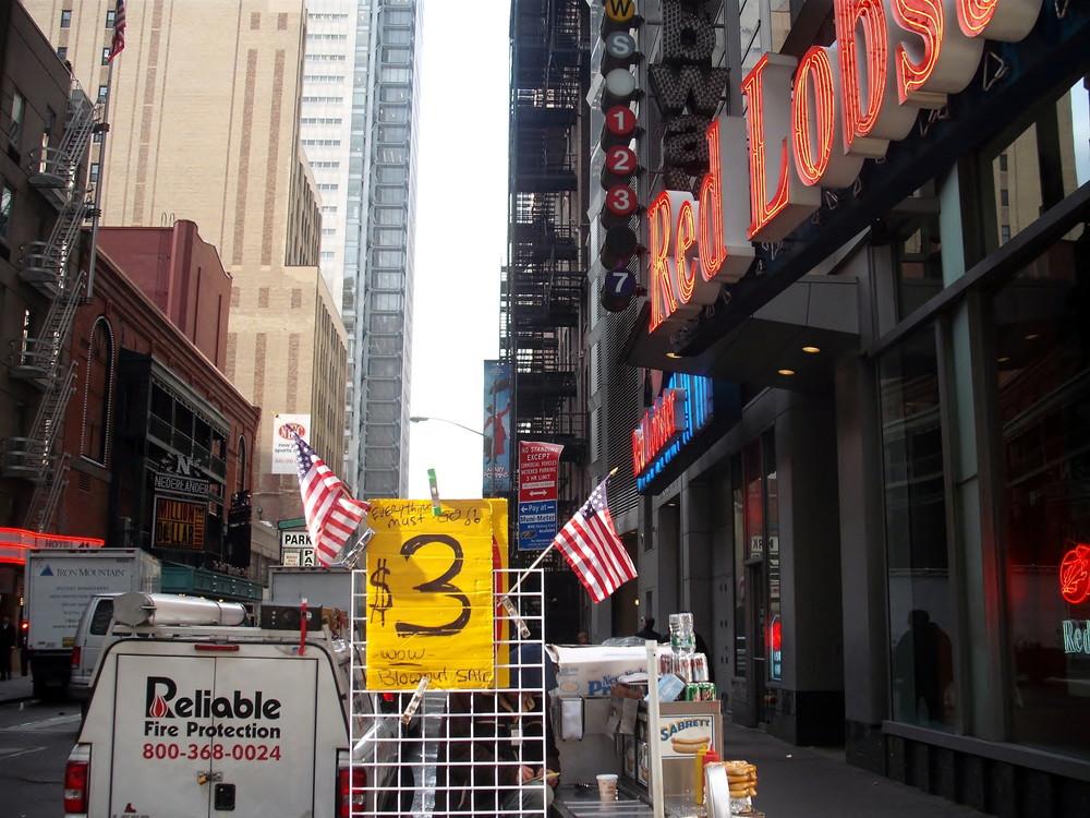 世界一周アメリカ・ニューヨーク観光2_11.jpg