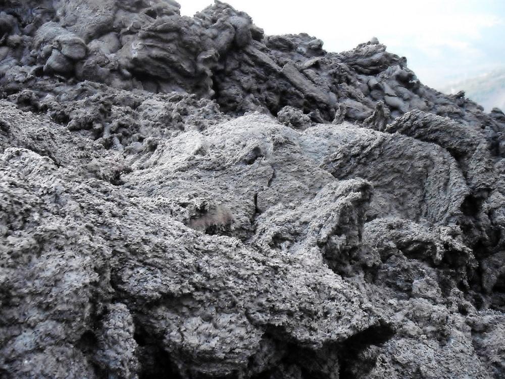 世界一周・グアテマラ・パカヤ火山観光_20.jpg