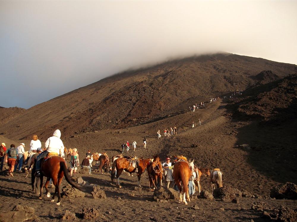 世界一周・グアテマラ・パカヤ火山観光_8.jpg