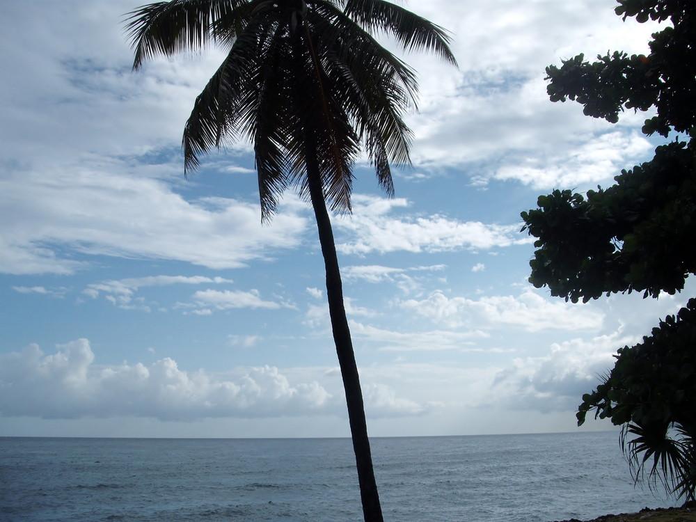 世界一周ドミニカ共和国サントドミンゴ観光1_50.jpg