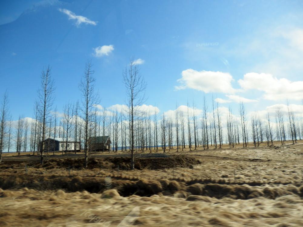 北欧旅行アイスランド・ドライブ1__8