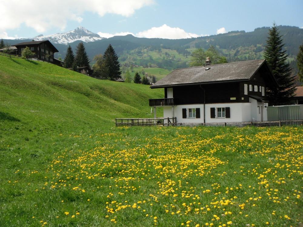スイス旅行・グリンデルワルド観光_31.jpg