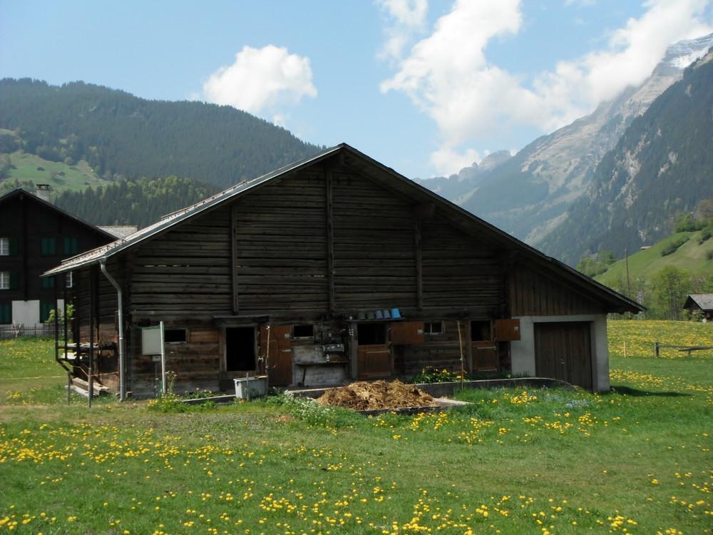 スイス旅行・グリンデルワルド観光_33.jpg