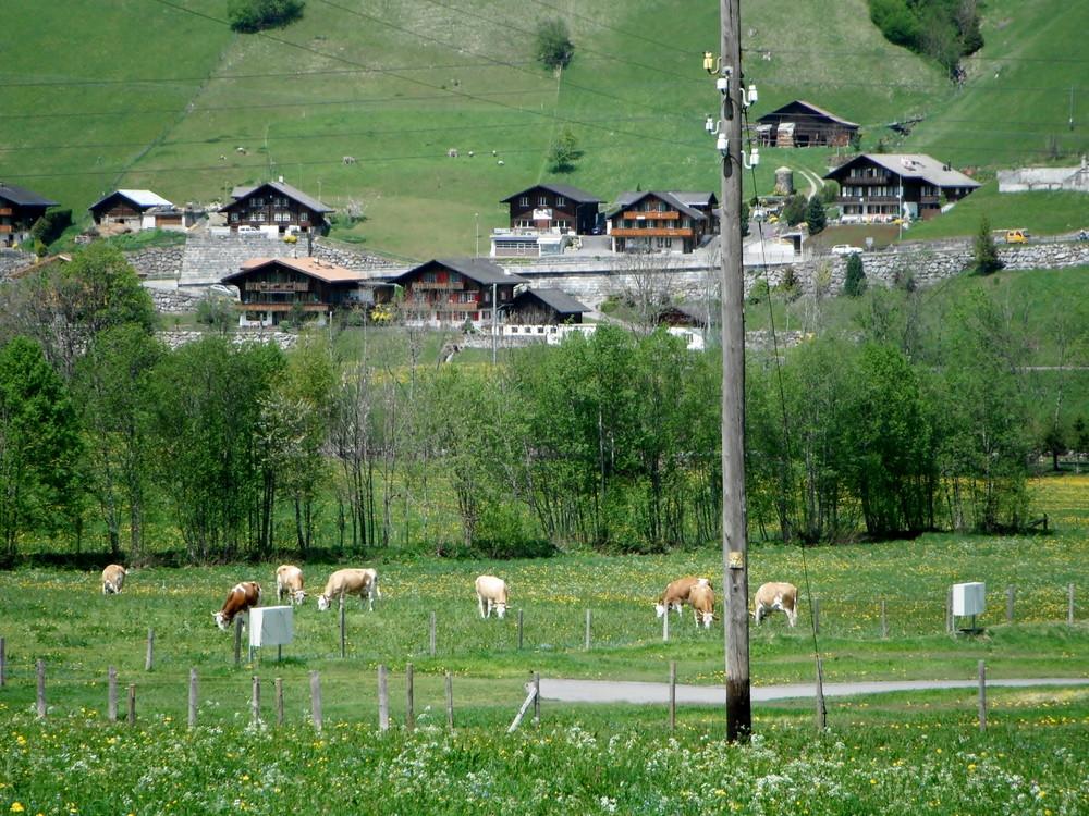 スイス旅行・グリンデルワルド観光_40.jpg