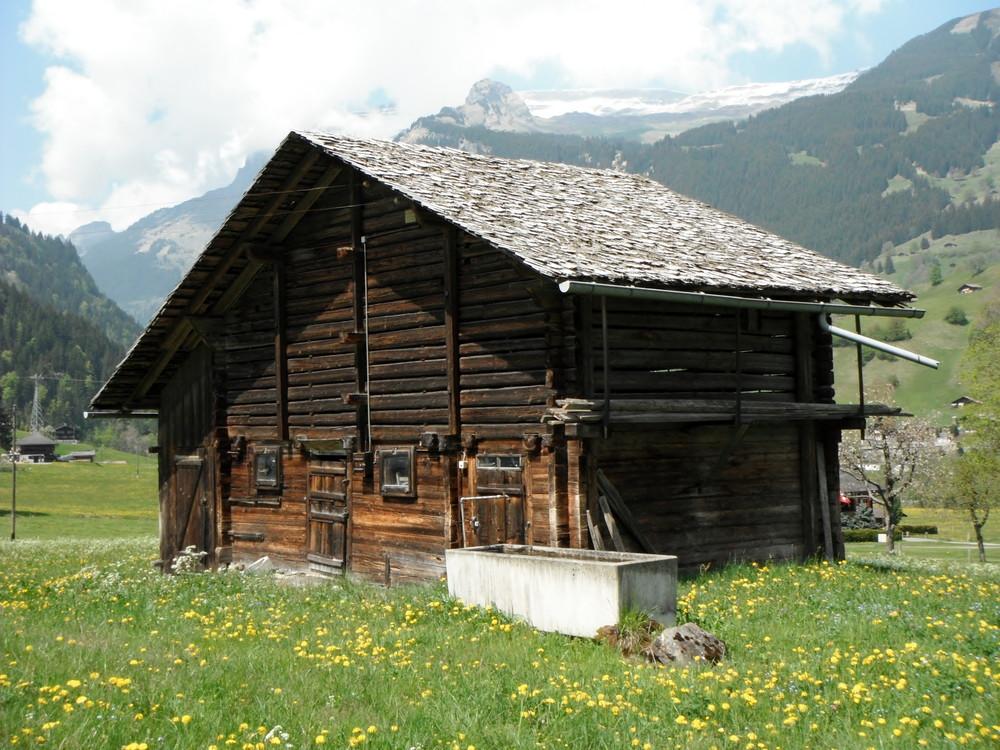 スイス旅行・グリンデルワルド観光_41.jpg