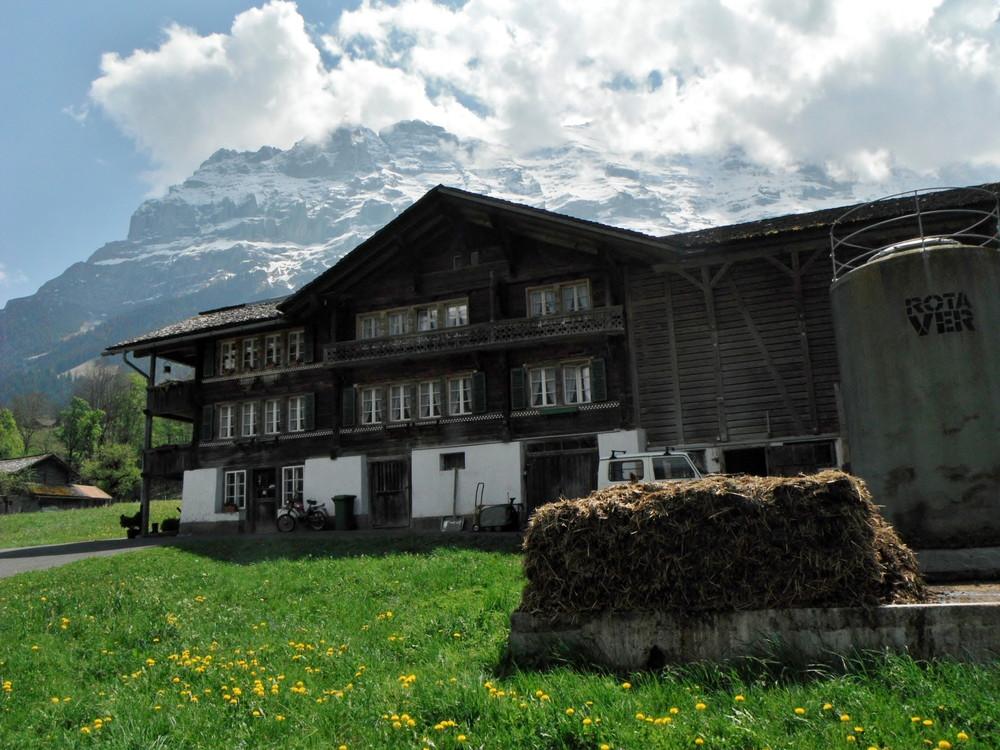 スイス旅行・グリンデルワルド観光_44.jpg