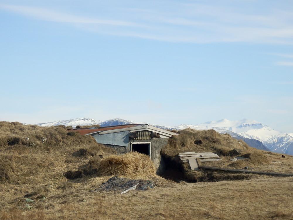 北欧旅行アイスランド・ホプン_1