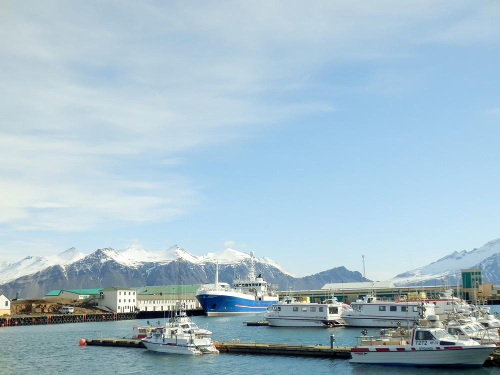 北欧旅行アイスランド・ホプン_3